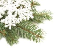 Snowflake ornament on a Christmas tree Stock Photos