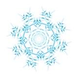 Snowflake ornate royalty free illustration