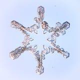 Snowflake på blå bakgrund Fotografering för Bildbyråer