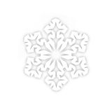 Snowflake from a paper Stock Images