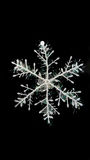 Snowflake. Picture in the black background Royalty Free Stock Image