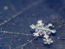 Snowflake on scratched surface. Macro shot of single snowflake on scratched plastic surface Stock Images