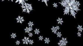 Snowflake Seamless stock footage