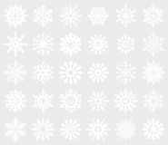 Snowflake set. Stock Images