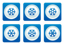 Snowflake set on blue button Stock Photos