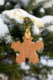 Snowflake shape gingerbread cookie Royalty Free Stock Image
