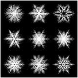 Snowflake silhouette icon Stock Images