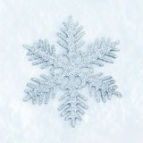 Snowflake in the snow Stock Images