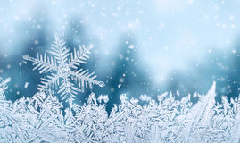 Snowflake and snow crystal Royalty Free Stock Photo