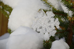 Snowflake and snow Royalty Free Stock Photos