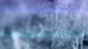 Snowflake on a snow. Snowflake moving on the snow stock footage
