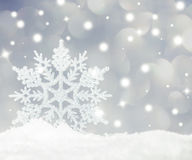 Snowflake. On snow. Studio shot. Christmas royalty free stock image