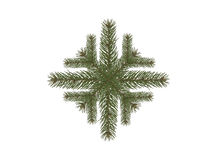 Snowflake spruce branch Stock Photo