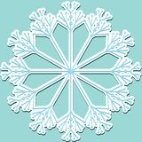 Snowflake, stricker Stock Images