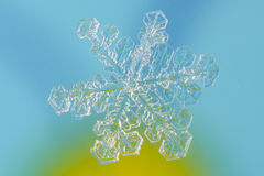 Snowflake. Tiny Snowflake with blue background Stock Images