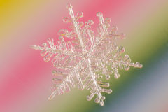Snowflake. Tiny Snowflake with rainbow background Royalty Free Stock Images