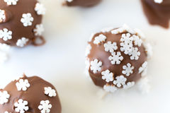 Snowflake Truffles Stock Images