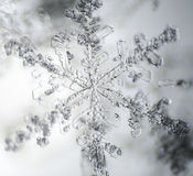 Snowflake under microscope. Royalty Free Stock Photography