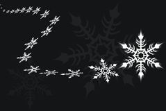Snowflake(vector). Snowflakes in winter, vector illustration Royalty Free Stock Photos