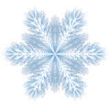 Snowflake on white Stock Photography