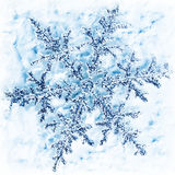 Snowflake winter background Royalty Free Stock Image