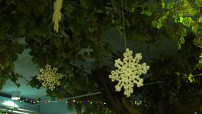 Snowflakees sur l'arbre de Noël banque de vidéos