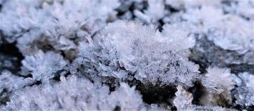 SNOWFLAKES ΣΤΗ ΧΛΟΗ στοκ φωτογραφία με δικαίωμα ελεύθερης χρήσης