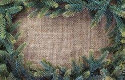 snowflakes έλατου Χριστουγέννων ανασκόπησης μπλε σκοτεινό darkly δέντρο Στοκ φωτογραφίες με δικαίωμα ελεύθερης χρήσης