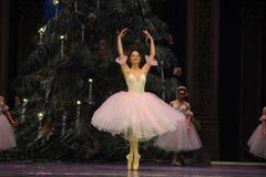 Snowflakes ο κορίτσι-καρυοθραύστης μπαλέτου Στοκ Εικόνα