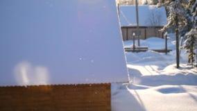 Snowflakes πέφτουν αργά στο έδαφος, ο φωτεινός ήλιος φωτίζει το μειωμένο χιόνι φιλμ μικρού μήκους