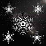 Snowflakes που τίθενται όμορφα για το χειμερινό σχέδιο Χριστουγέννων απεικόνιση αποθεμάτων