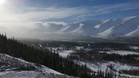Snowflakes πτώση στα πράσινα δέντρα και το ορεινό τοπίο απόθεμα βίντεο