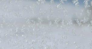 Snowflakes στο γυαλί απόθεμα βίντεο
