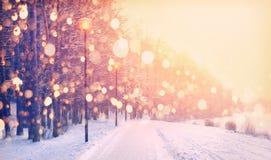Snowflakes στο υπόβαθρο χειμερινών πάρκων Χιονοπτώσεις στο πάρκο Στοκ εικόνα με δικαίωμα ελεύθερης χρήσης