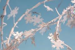 Snowflakes Stock Image