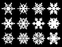 Snowflakes. Realistic white snowflakes on black background Royalty Free Stock Images