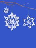 Snowflakes. Crocheted snowflakes hanging from a curly willow branch Royalty Free Stock Images