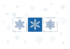 Snowflakes vector illustration