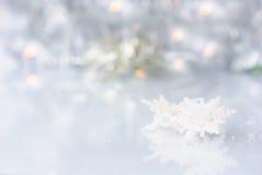 snowflakes Royaltyfria Bilder