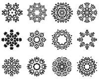 12 snowflakes Royaltyfria Bilder