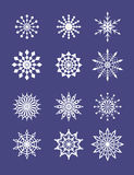 Snowflakes. This is the illustration of different snowflakes Stock Photography