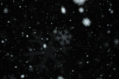 Snowflakes abstract blur Stock Images