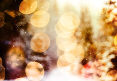 Snowflakes against winter forest and bokeh lights winter forest and bokeh lights Royalty Free Stock Photography