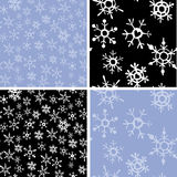 Snowflakes backgrounds Stock Photo