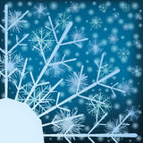 Snowflakes. Stock Photography