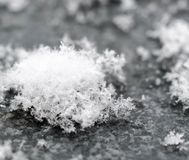 Snowflakes close up. Black and white shot of Snowflakes close up with beautiful details royalty free stock images