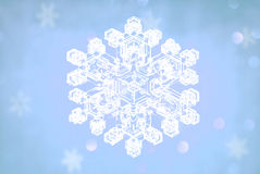 Snowflakes crystal Royalty Free Stock Images