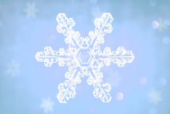 Snowflakes crystal. Beautiful snowflakes crystal on the neon background Stock Photo