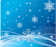 Snowflakes design vector Stock Image