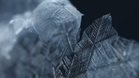 Snowflakes Melting Close-up stock footage